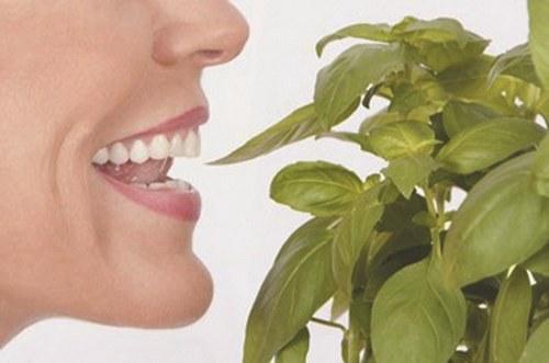 口臭的危害和预防