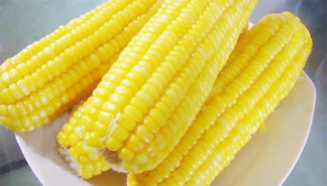 吃玉米,要把胚芽啃干净