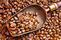 咖啡豆壳减轻与胖相关炎症