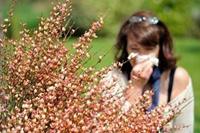 花粉过敏对症用药