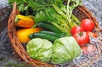 水果和蔬菜你洗对了吗