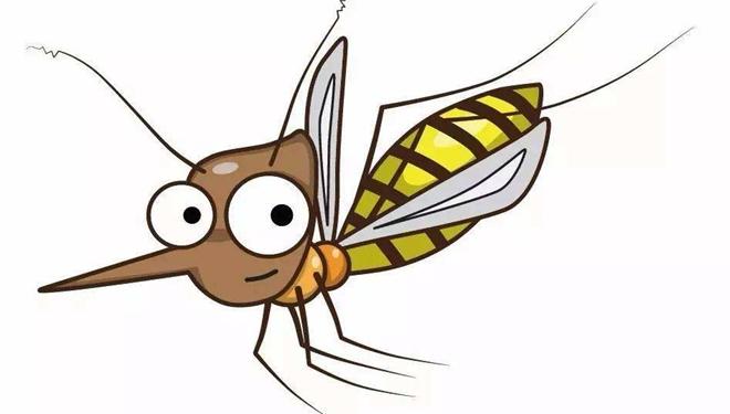 """网传""""驱蚊大法""""有用吗?疾控专家一一破解!"""